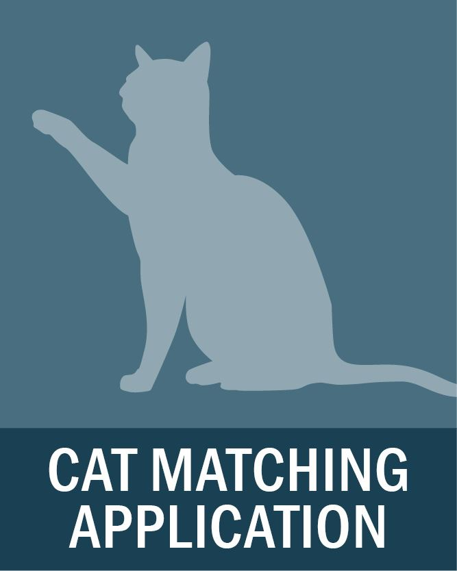 Cat Matching Application