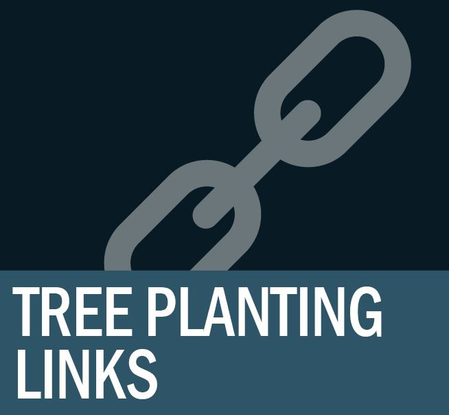 Tree Planting Links